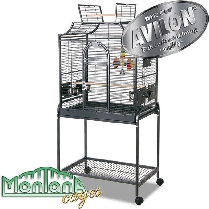 Elegante jaula de pájaros en soporte: Amazon.es: Productos para ...
