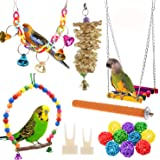 Anteer 12 Packs Bird Parrot Swing Chewing Toys - Hanging Bell Birds Cage Toys Suitable for Small Parakeets, Cockatiel…