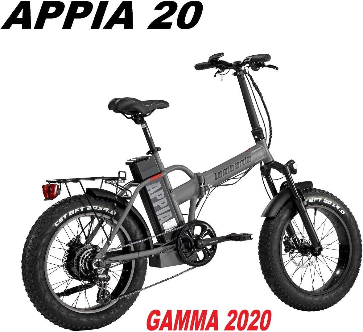 Lombardo - Bicicleta APPIA con Rueda 20 Fat Bike Motor 250 W 80 NM ...