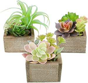 Artificial Succulents Plants Potted, Mini Assorted Faux Succulents Greenery Decorative Fake Succulents Plants Artificial Plants for Home Office Desk Plants Decor, Set of 3