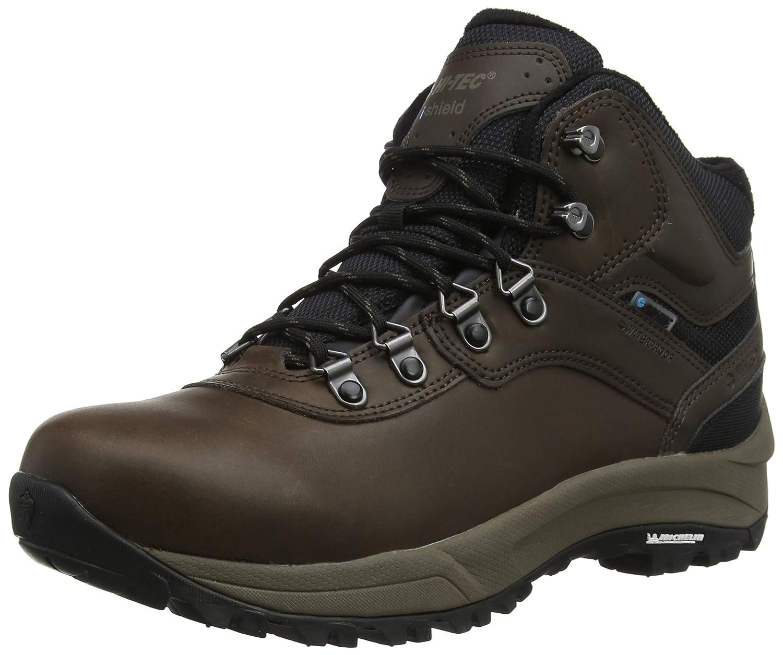 Marron (Dark Chocolate 41) 43 EU Hi-Tec Altitude VI I imperméable, Chaussures de Randonnée Hautes Homme