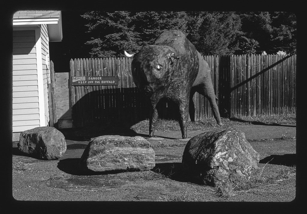 8 x 12 BW Photo of: Mohawk Trading Post buffalo statue, Route 2, Shelburne, Massachusetts 1995 Roadside America Margolies, John, photographer 36b