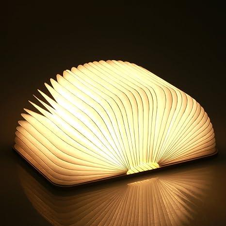 Risultati immagini per libro lampada