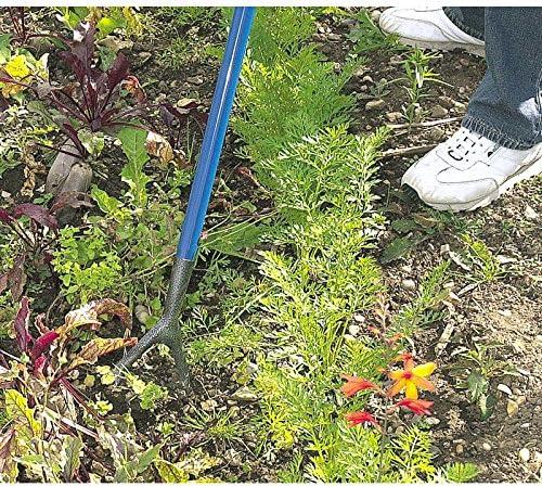 Amazon.com: Draper acero al carbono holandés azada: Jardín y ...