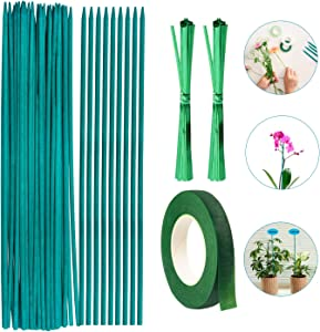 ANGELIOX Wooden Plant Stake, 35Pcs Green Bamboo Stick, 12 Inch Floral Plant Support, with 2 Pack Garden Ties and 1 Roll Floral Tape for Indoor Floral Potted Orchid,Craft(35Pcs)