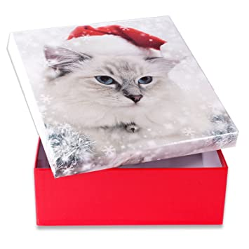regalo de Navidad Gato - Caja de Regalo en 10 Diferentes Tamaños Gr. 8 (22 x 22 x 8 cm): Amazon.es: Oficina y papelería