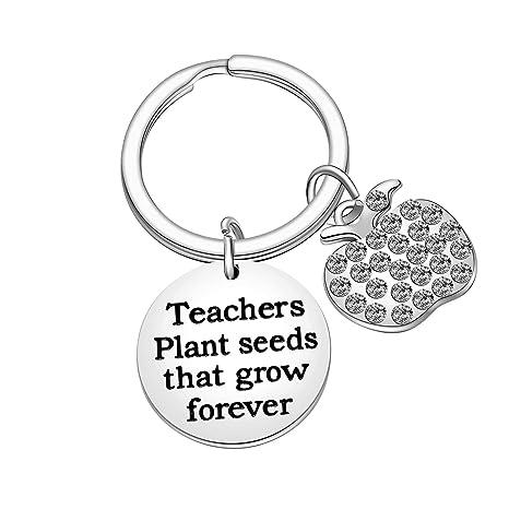 Amazon.com: Llavero para profesor, semillas de plantas ...