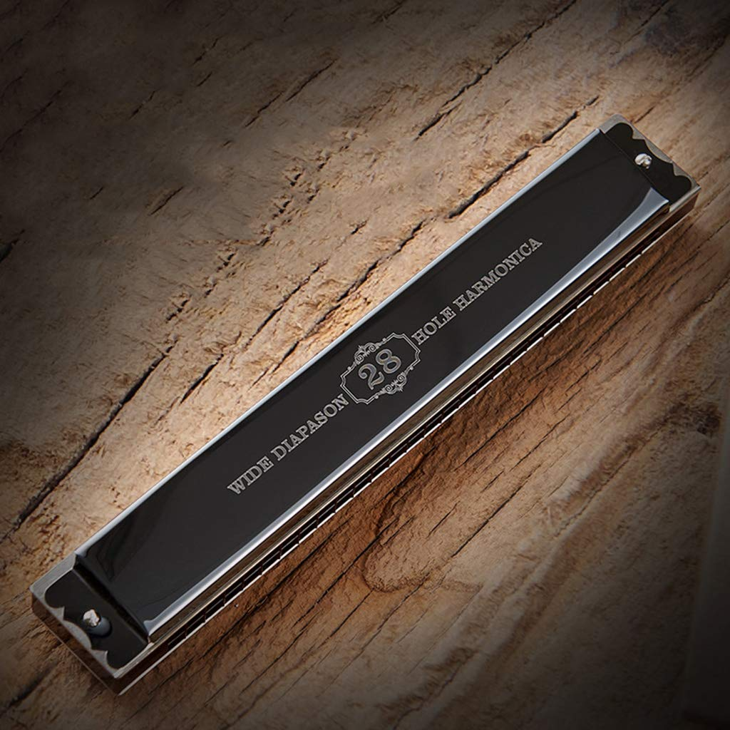 DZXM Harmonica 28 Holes Polyphony C Tone Adult Child Professional Performance Musical Instrument by DZXM