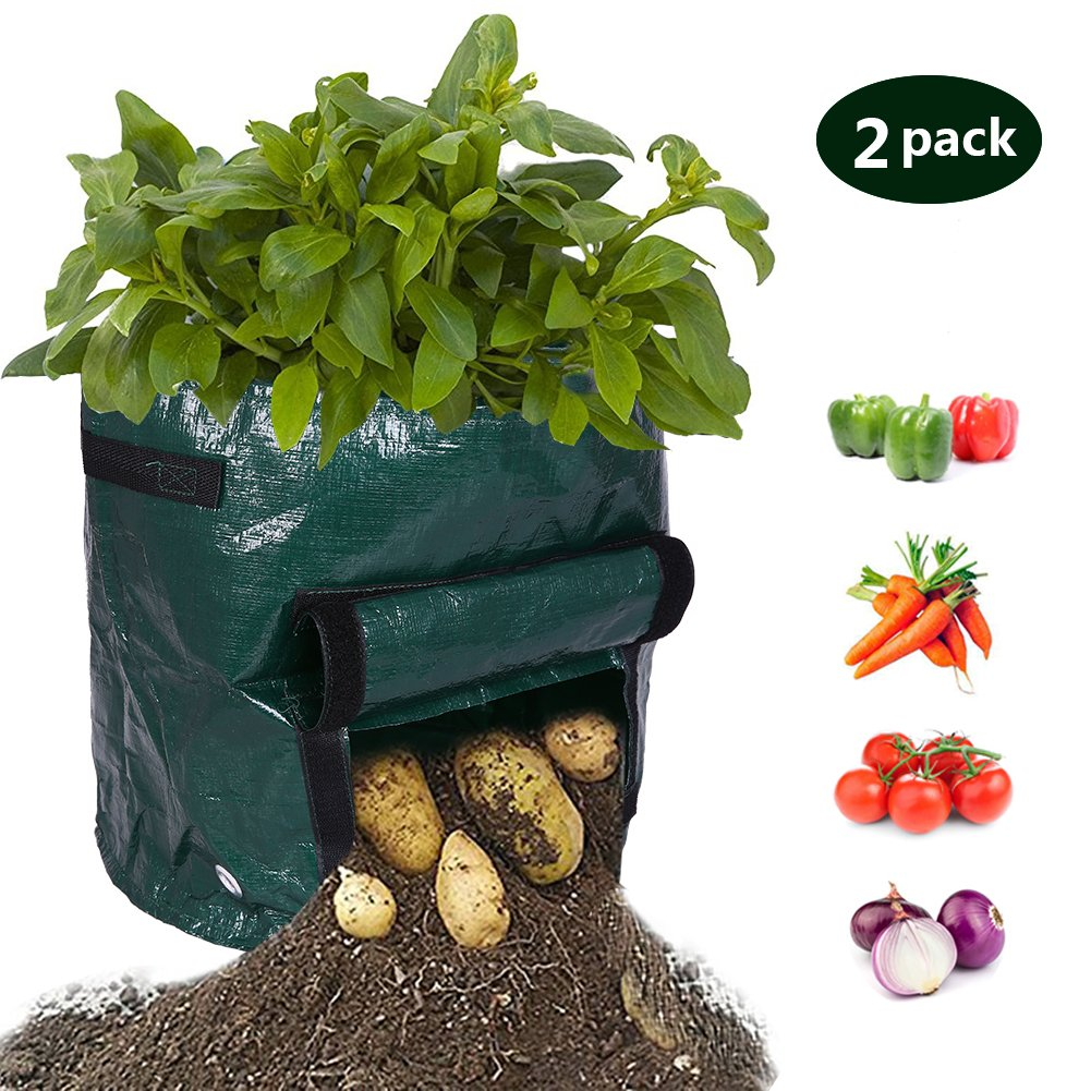 Albabara Plant Grow Bags 7 Gallon Potato Garden DIY Patios Vegetables Durable Planter Bag with Flap Handles and Heavy Duty for Harvest Rising Tomato, Carrot, Taro and Onions, Atrovirens 2 Pack by Albabara