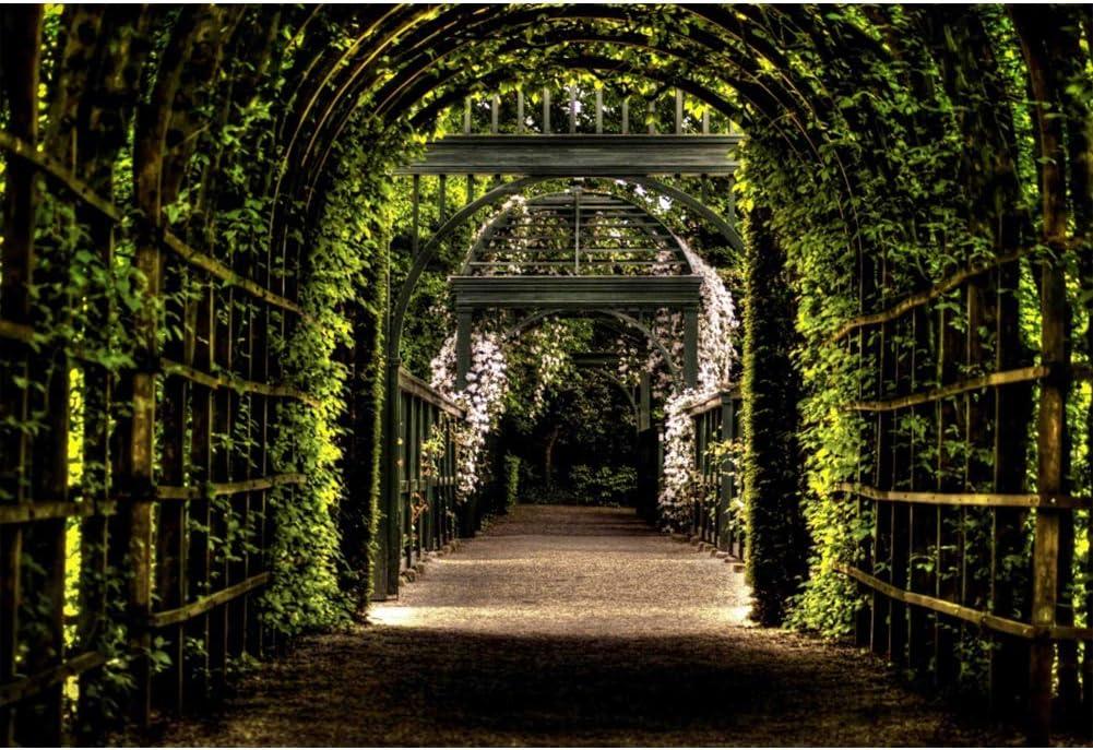 YongFoto 3x2m Vinilo Fondo de fotografía Pérgola de jardín Camino Arco Verde Hojas Las Flores Telón de Fondo Fotografía Estudio de Foto Boda Fondos fotográficos Papel Pintado: Amazon.es: Electrónica