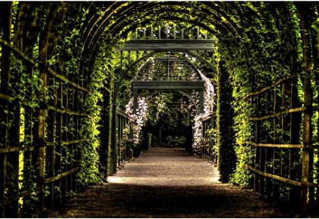 YongFoto 3x2m Vinilo Fondo de fotografía Pérgola de jardín Camino ...