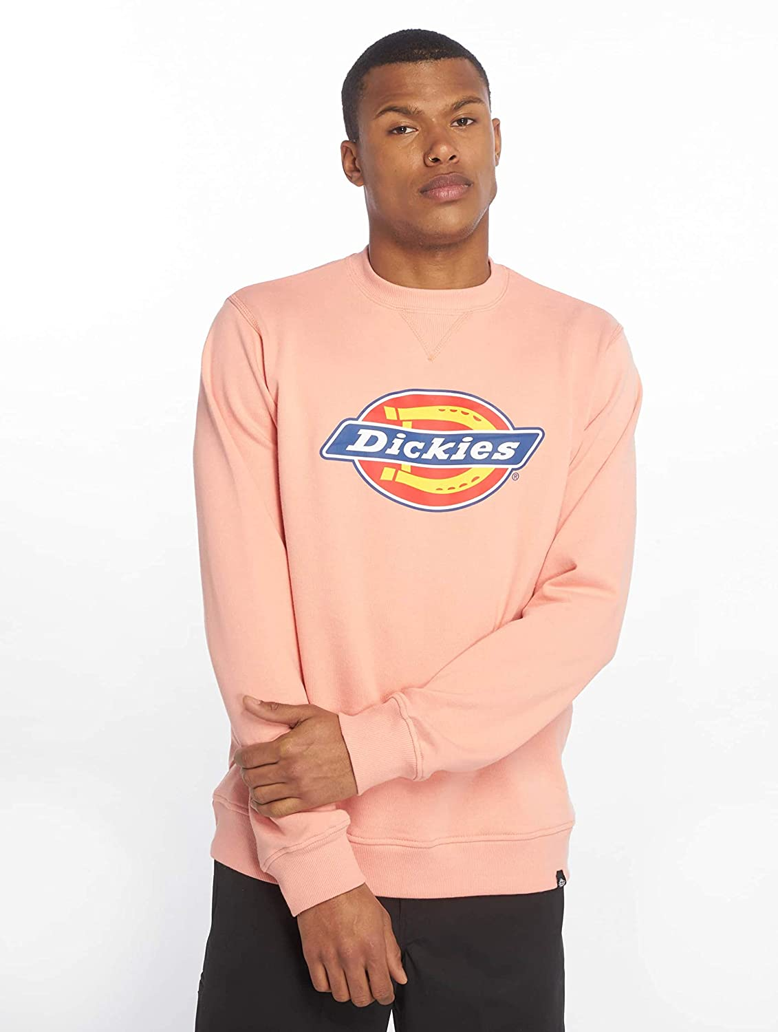 Dickies Mens Harrison Sweatshirt