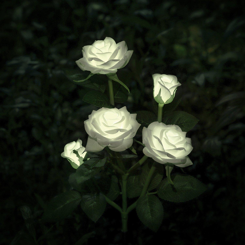 XLUX decorative solar rose flower light, White