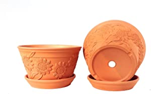 Set of 2 Raised Sunflower Embellished Natural Terracotta Garden Pot with Tray