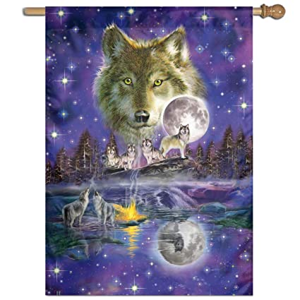 Amazon.com: Private Bath Customiz Wolves Art Full Moon ...