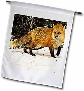 Wild animals - Red Fox - 18 x 27 inch Garden Flag (fl_771_2)