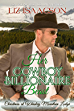 Her Cowboy Billionaire Beast: A Hammond Brothers Novel (Christmas at Whiskey Mountain Lodge Book 4)