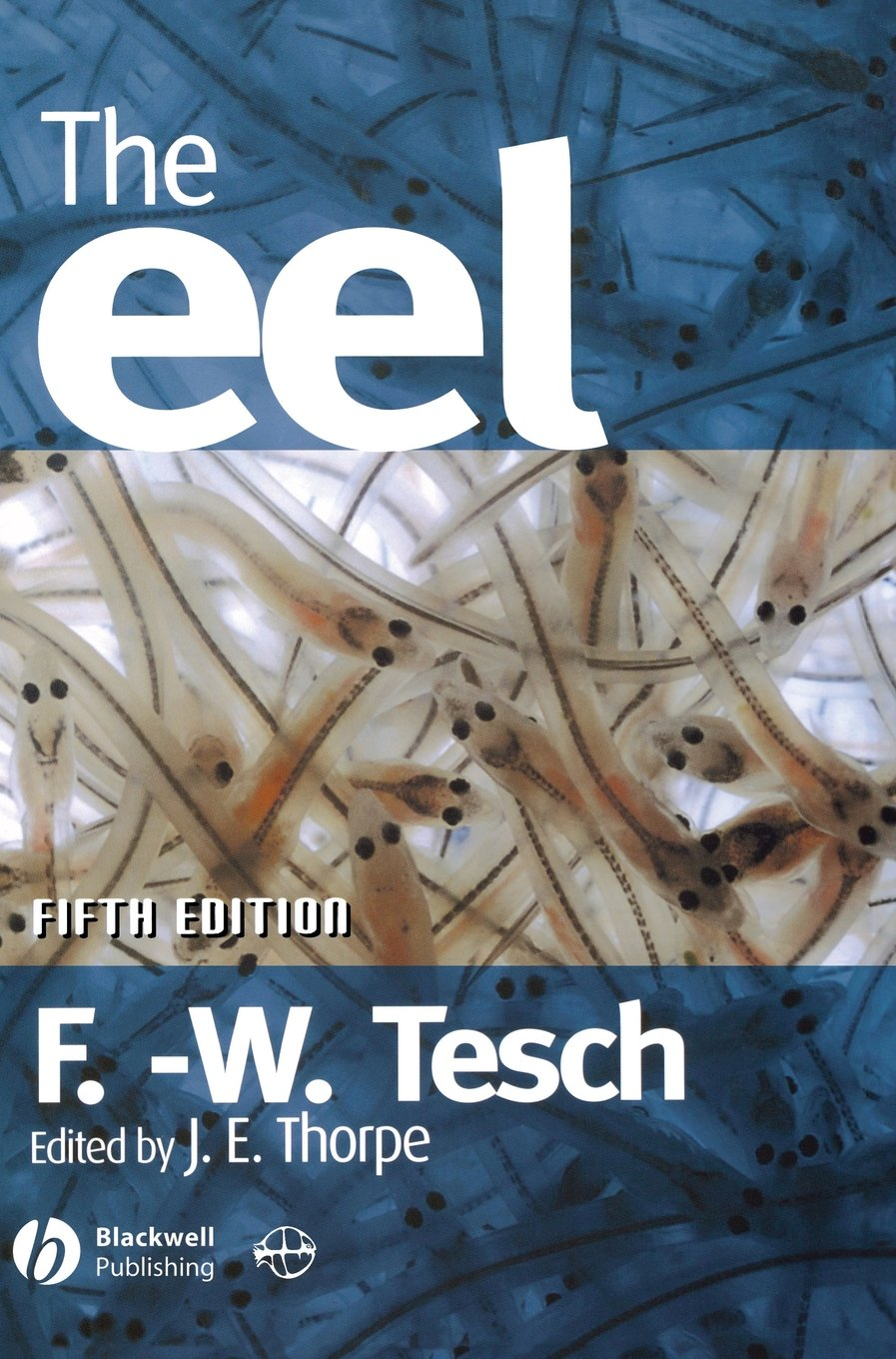 The Eel by Brand: Wiley-Blackwell
