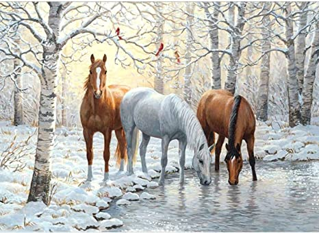 Diamond Painting Kits for Adults Kids Round Full Drill Gem Art Kits Painting with Diamonds Crafts for Women Home for Wall Decor 12x16inch//30x40cm