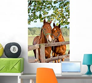 Wallmonkeys Two Horses in Paddock Wall Decal Peel and Stick Graphic WM202626 (36 in H x 24 in W)