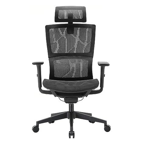 Amazon.com: Silla de oficina ergonómica XUER con soporte ...