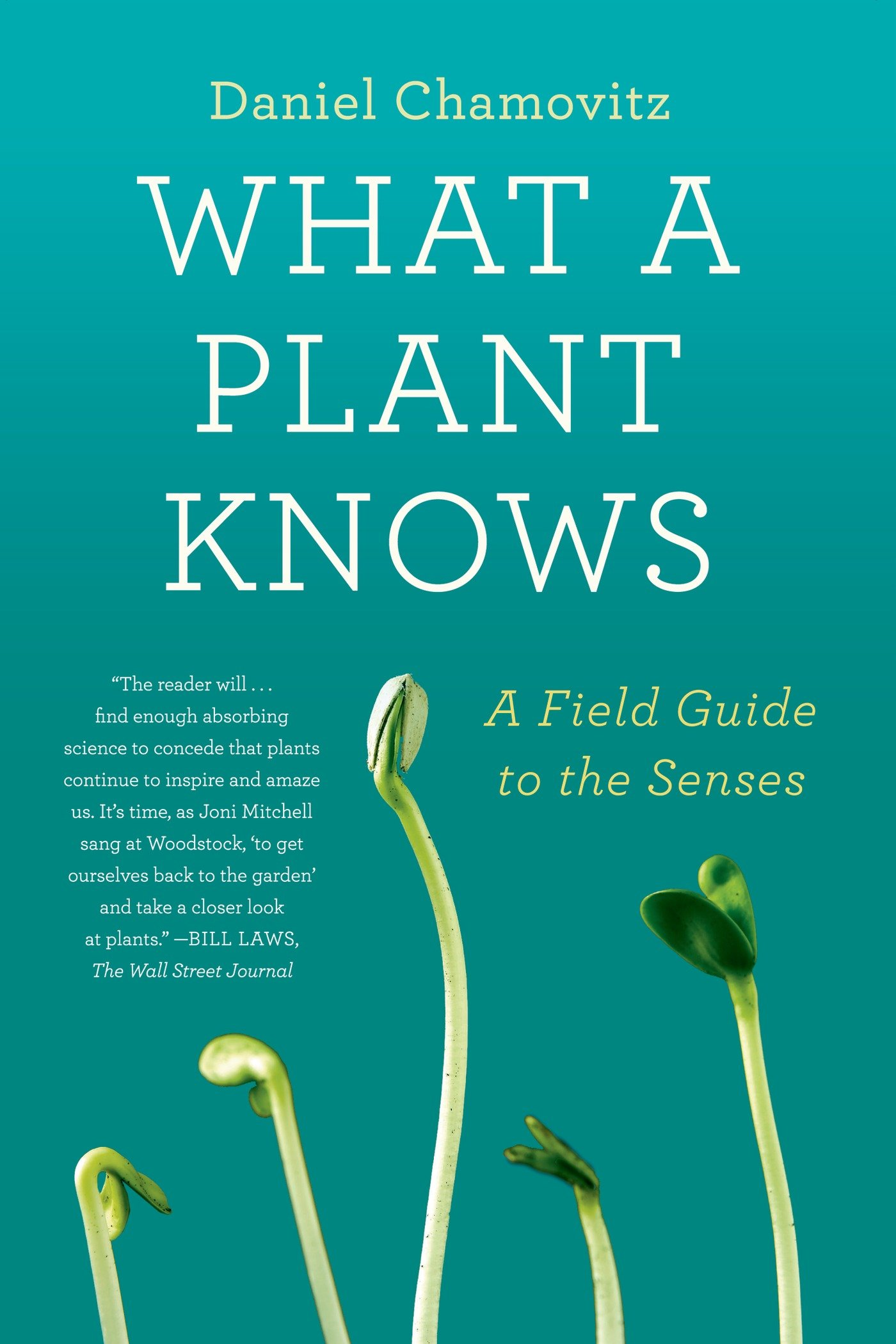 amazon what a plant knows a field guide to the senses daniel