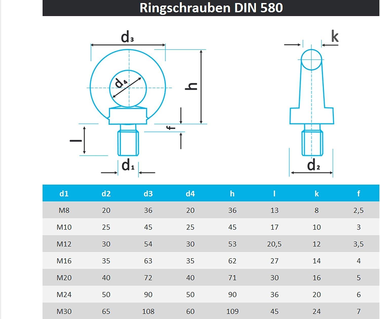 PROTECH 10 St/ück Ringschraube DIN 580 M12 Edelstahl A2 V2A Rostfrei /Ösenschrauben/Ring Augenschraube gegossen und poliert