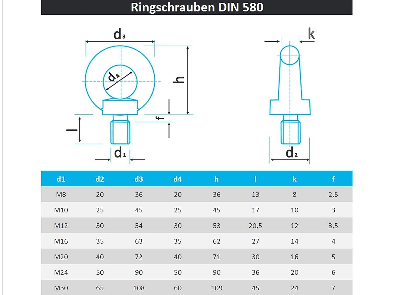 PROTECH 10 St/ück Ringschraube DIN 580 M8 Edelstahl A2 V2A Rostfrei /Ösenschrauben/Ring Augenschraube gegossen und poliert