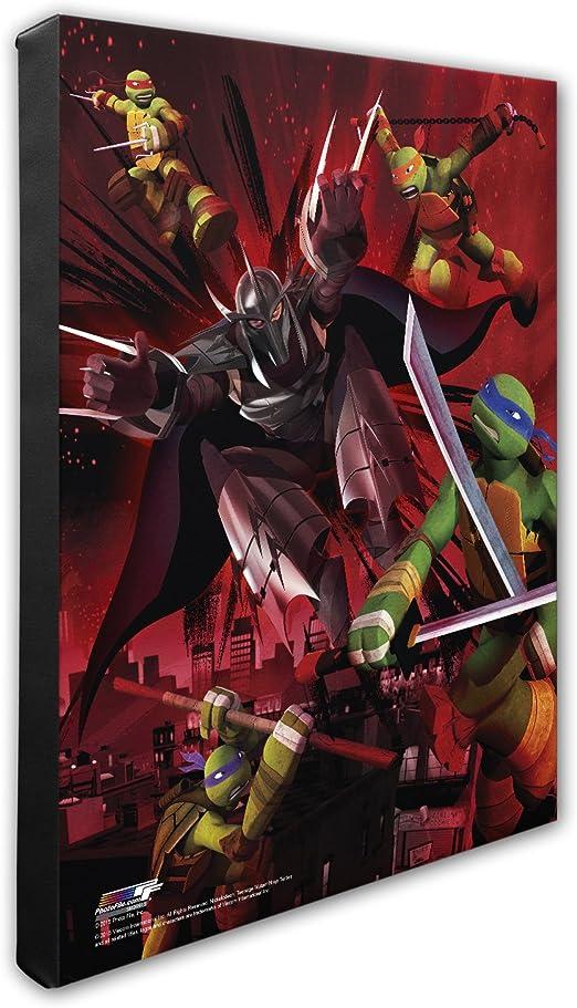 Amazon.com: Teenage Mutant Ninja Turtles Canvas: Home & Kitchen
