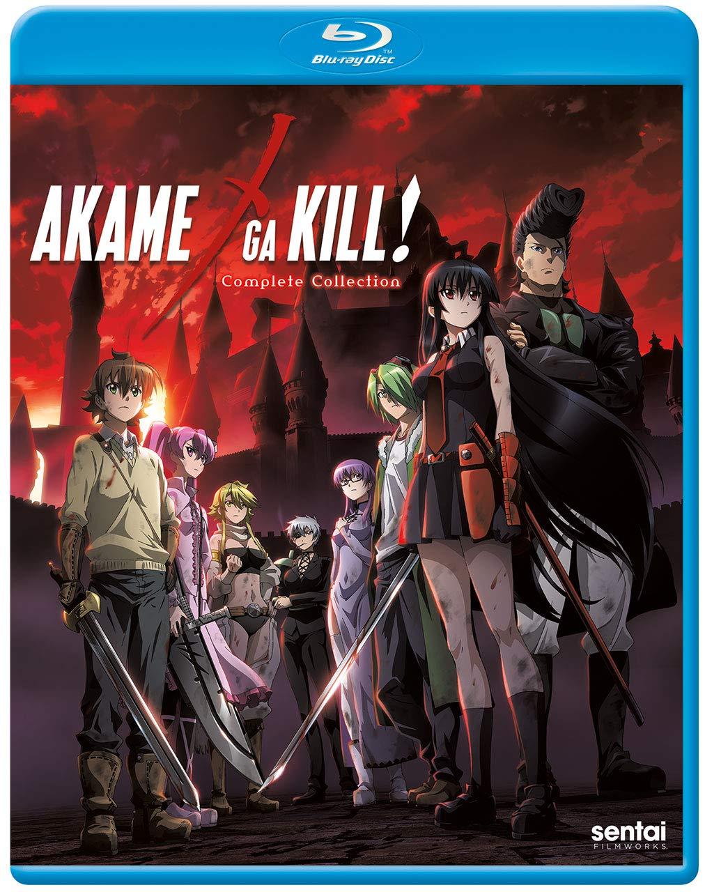 Blu-ray : Akame Ga Kill: Complete Collection (Subtitled, Anamorphic)