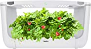 Hydroponics Growing System,Support Indoor Grow,herb Garden kit Indoor, Grow Smart for Plant, Built Your Indoor Garden