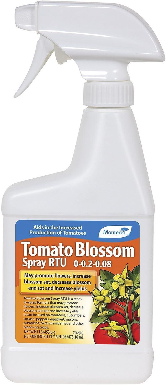 Monterey Tomato Blossom Spray