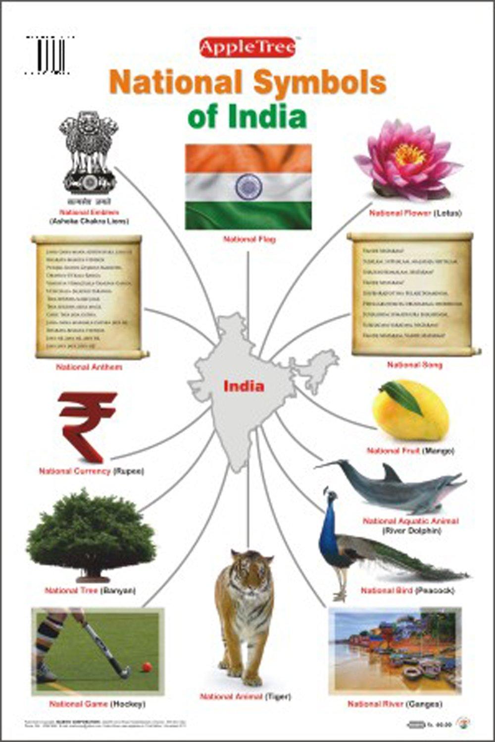 Buy Educational Charts National Symbols Of India Book Online At
