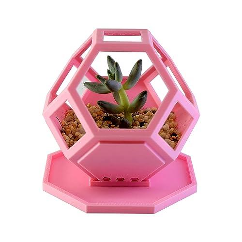 Macetas para cactushttps://amzn.to/2t43tpq