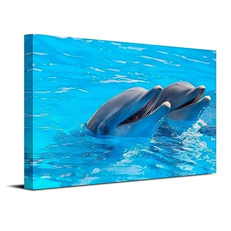 Amazon.com: Royllent 1 Panel Framed Wall Art 16x24inch Dolphin Swim ...