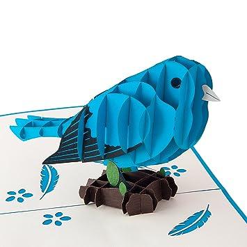 Blauer Vogel Hochwertiges Geschenk Fur Frauen Und Manner Detailreich