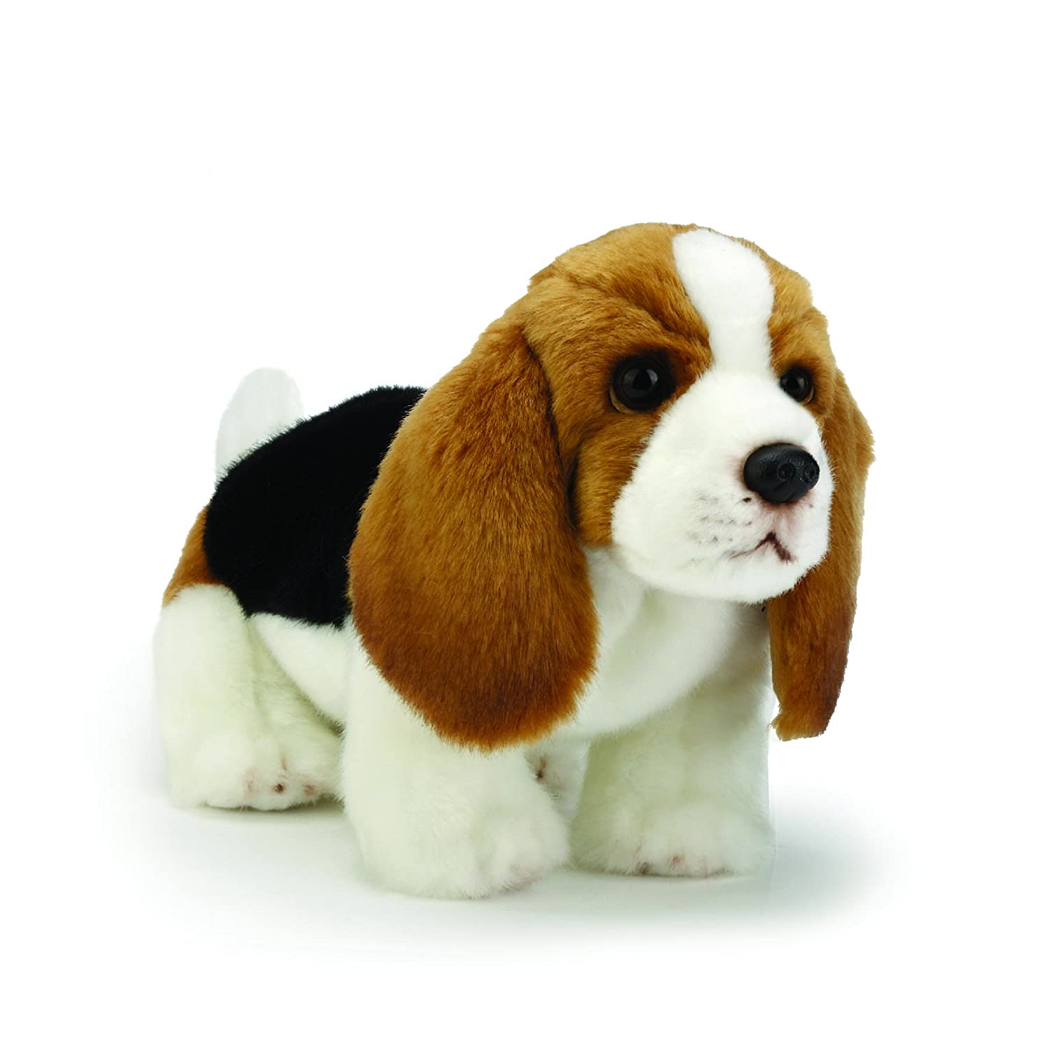 Amazon Com Nat And Jules Friendly Small Basset Hound Dog Children S