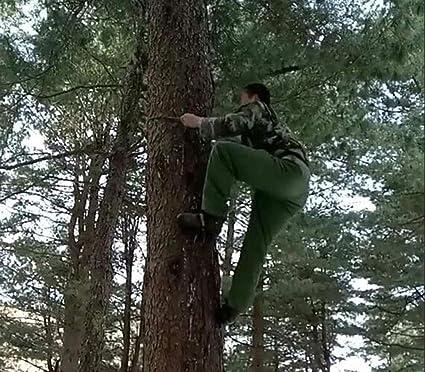 RENHAN Cinco Garras Artefacto Trepador De árboles,En El Arbol Acero Inoxidable Pata De Gato