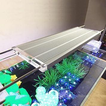 Luz LED para acuario de peces El acuario de aluminio retráctil varilla 5730 plantas acuáticas faro de la lámpara de mar 30 * 10 * 1 cm: Amazon.es: Deportes ...