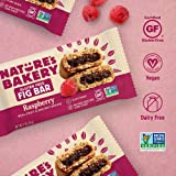 Nature's Bakery Gluten Free Fig Bars, Raspberry