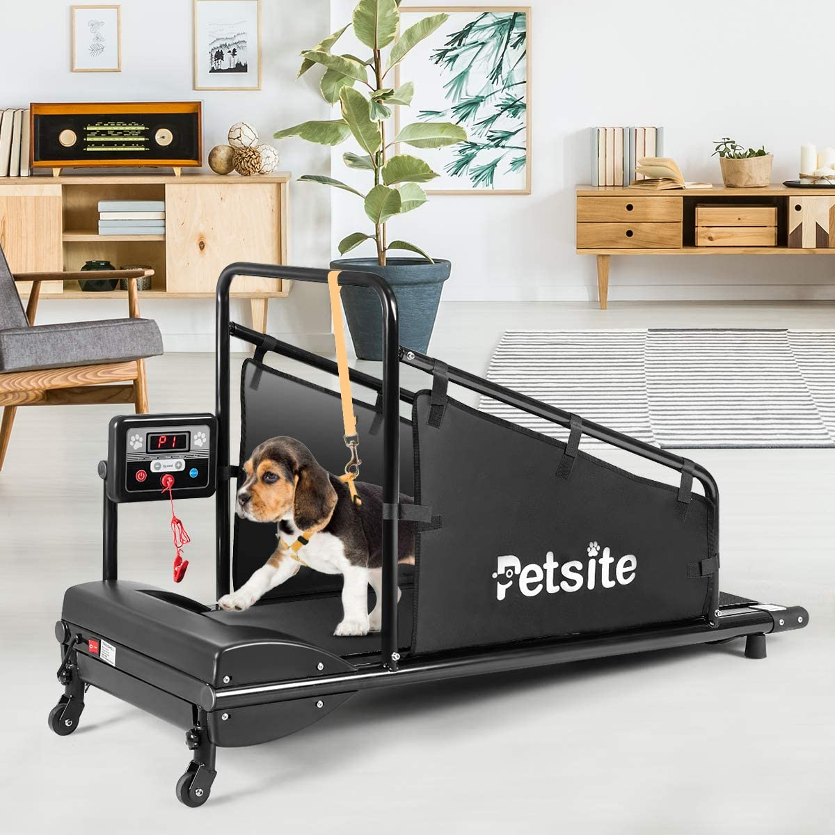 PETSITE Dog Treadmill, Pet Dog Running Machine for Small & Medium-Sized Dogs, Pet Fitness Treadmill with 1.4'' LCD Display Screen, 200 LBS Capacity