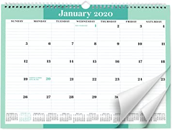Amazon Com Sweetzer Orange 2020 Calendar 18 Month Office Wall Calendar 2020 June 2021 Mint Business Design Monthly Planner Daily Wall Calendars For Office Organization 11 5 X 15 Inch Hanging Wall Office Products