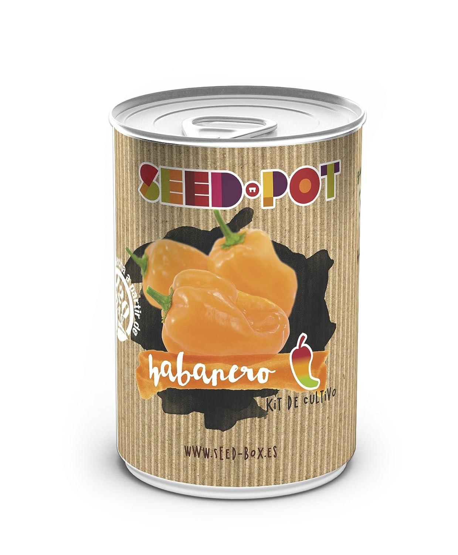 SeedBox PGPTHB Lata de cultivo guindilla habanero con naranja ...