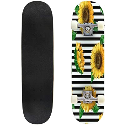 """Beautiful Chamomile Pattern Vector Illustration Outdoor Skateboard 31""""x8"""" Pro Complete Skate Board Cruiser 8 Layers Double Kick Concave Deck Maple Longboards for Youths Sports : Sports & Outdoors"""