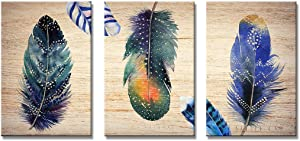 3 Panel Wall Art Decor Abstract Animal Feathers Pictures Artwork For Living Room (Feather, 20x30in)