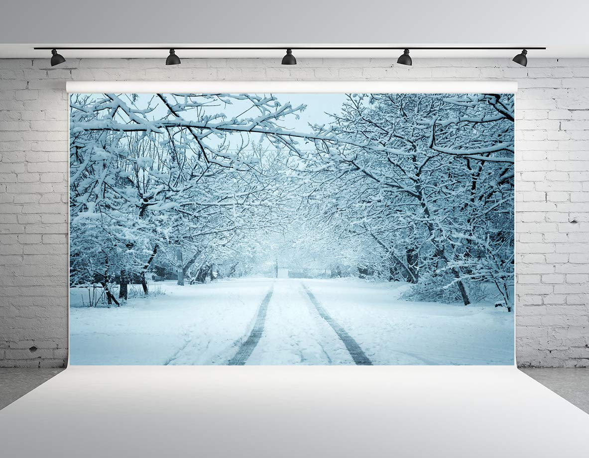 Kate 10x6.5ft White Snow Photography Backdrop Winter Landscape Street with Snowy Trees Photo Background