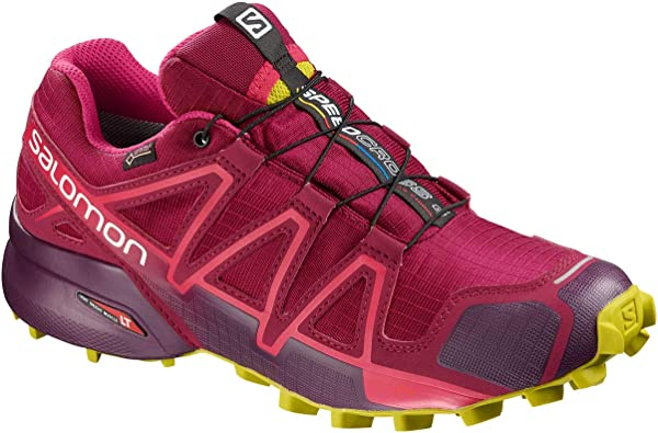 Salomon Speedcross 4 Gore-Tex Womens Zapatilla De Correr para Tierra - SS19-41.3: Amazon.es: Zapatos y complementos