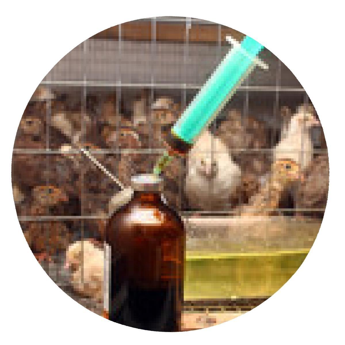 alfombrilla de ratón jeringa con antibióticos cerca de la pequeña ...