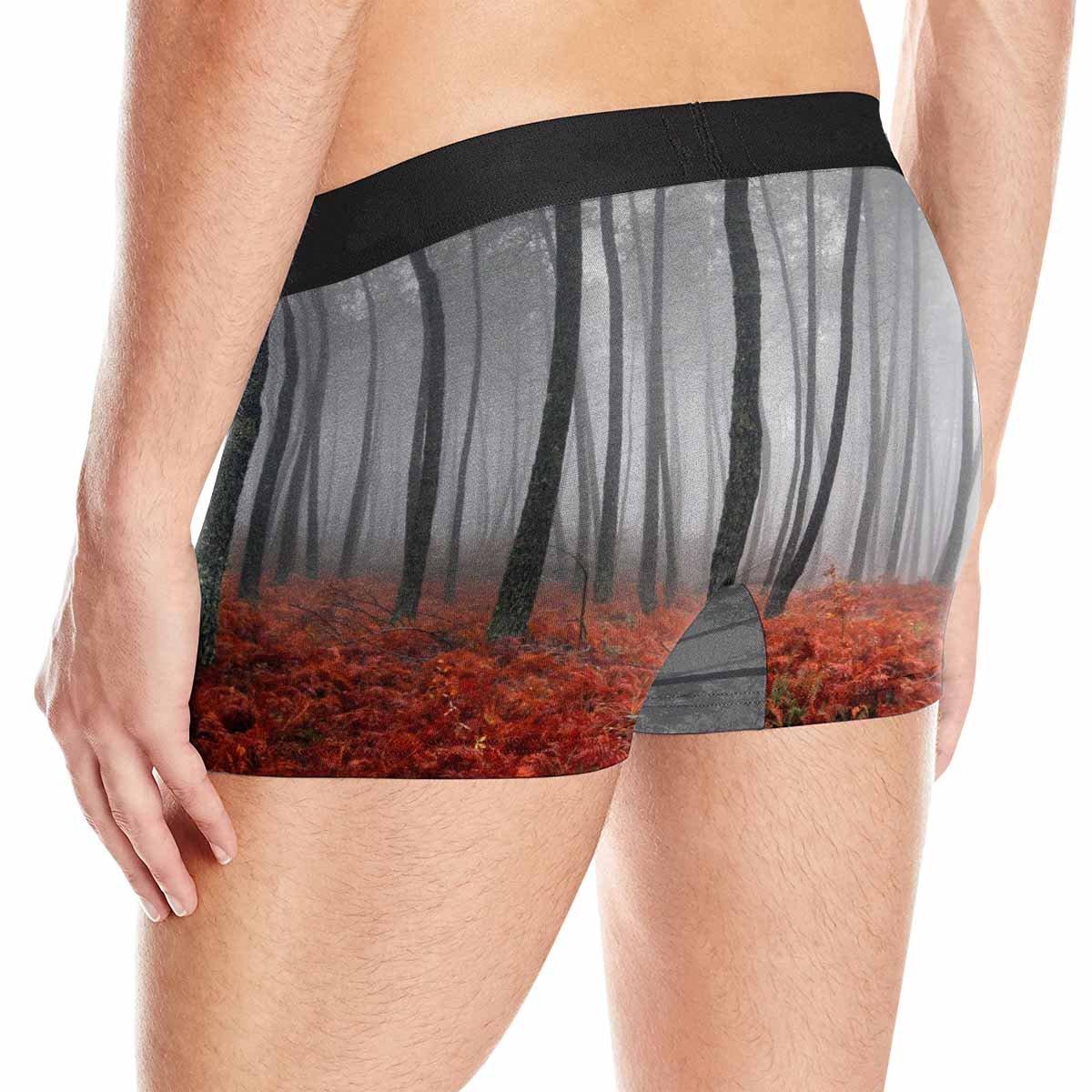 INTERESTPRINT Mens Boxer Briefs Underwear Winter Landscape XS-3XL