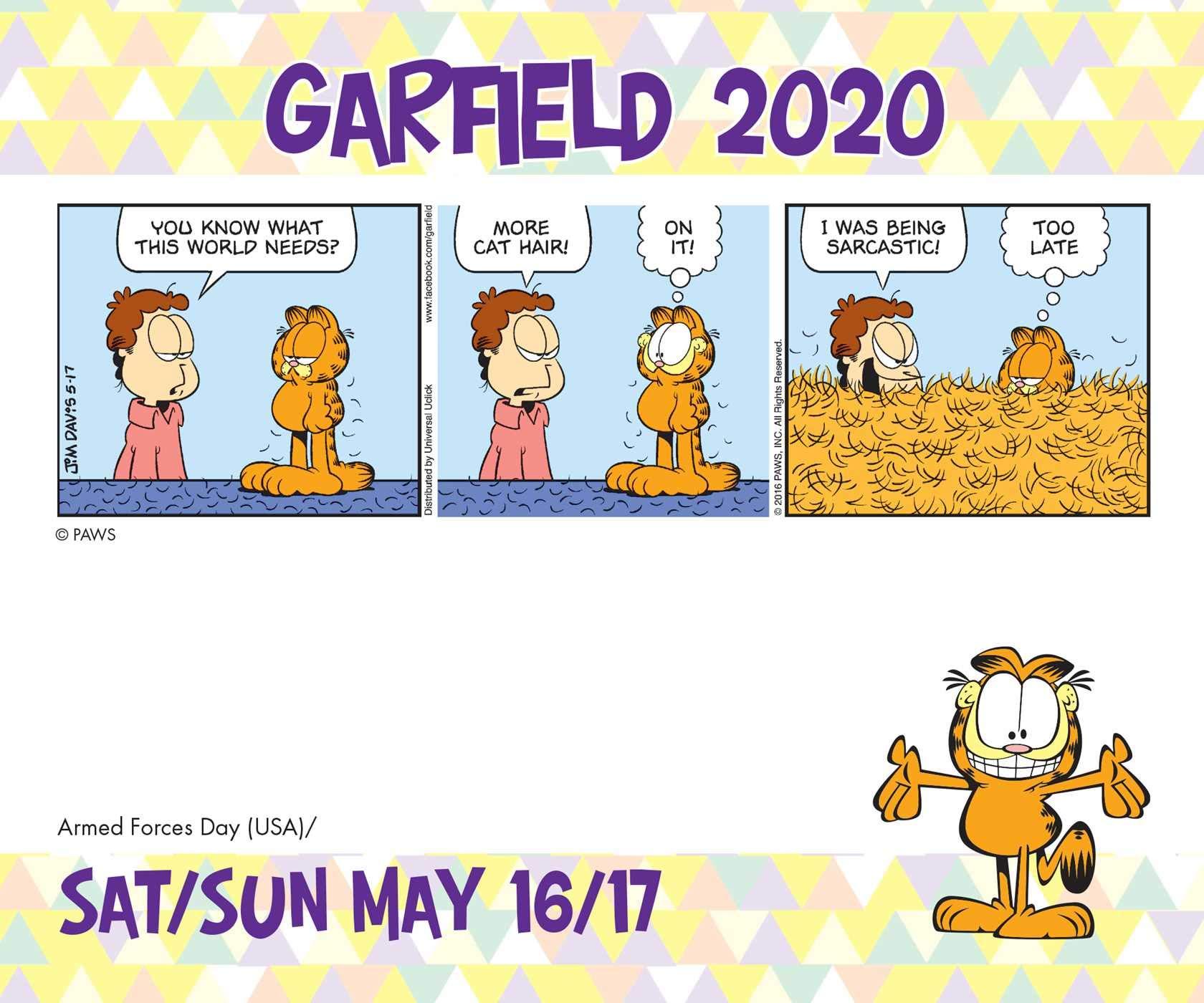 Garfield 2020 Day To Day Calendar Davis Jim 0050837424753 Amazon Com Books